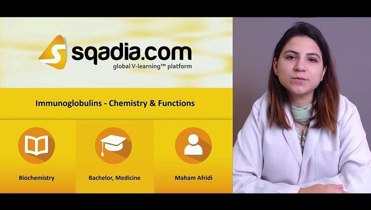 Big vr6v4yarmujjayqa1lwq 171027 s0 afridi maham immunoglobulins chemistry and functions intro